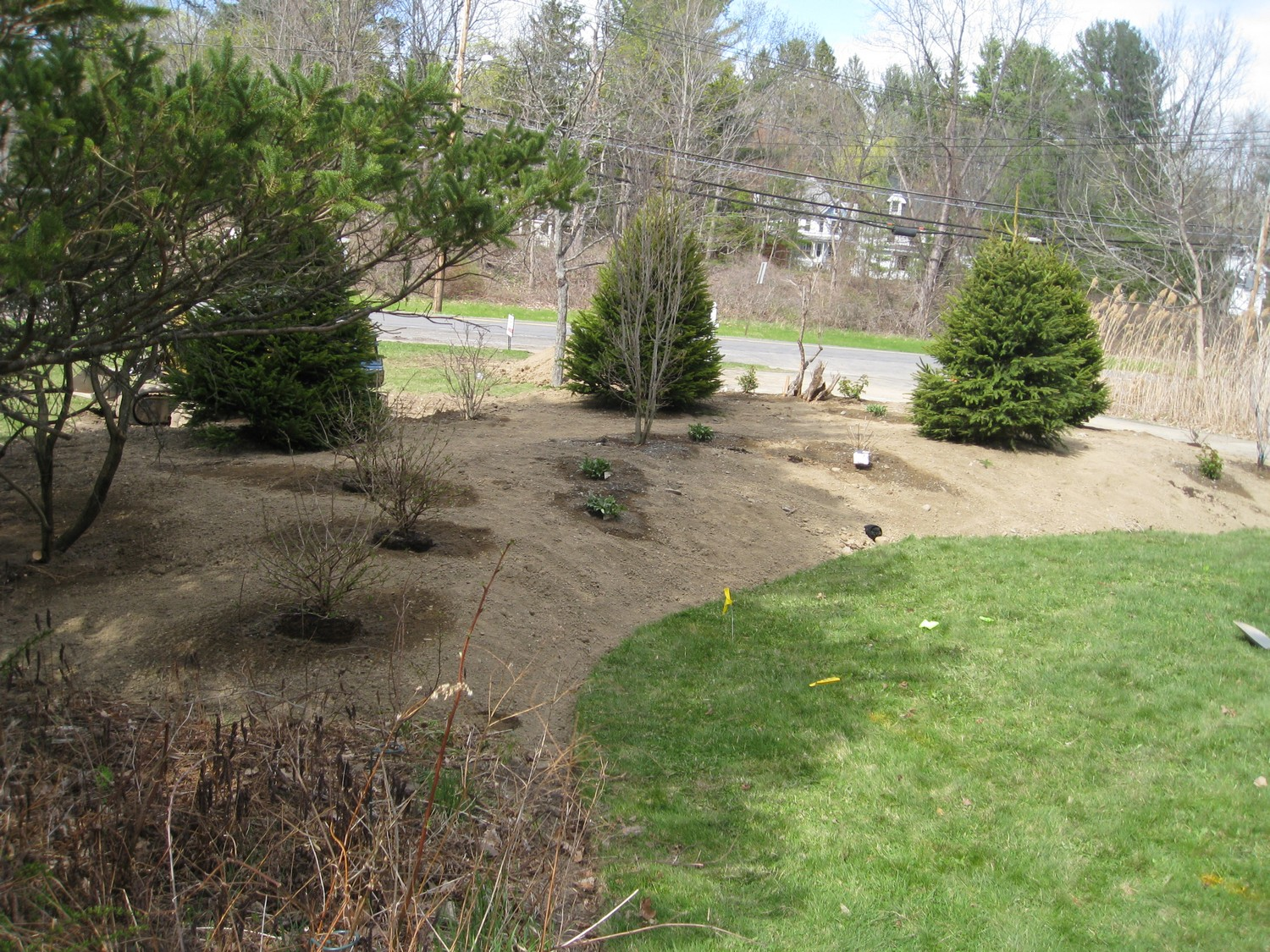Naturalistic privacy berm delmar ny landscaping and for Landscape berm design