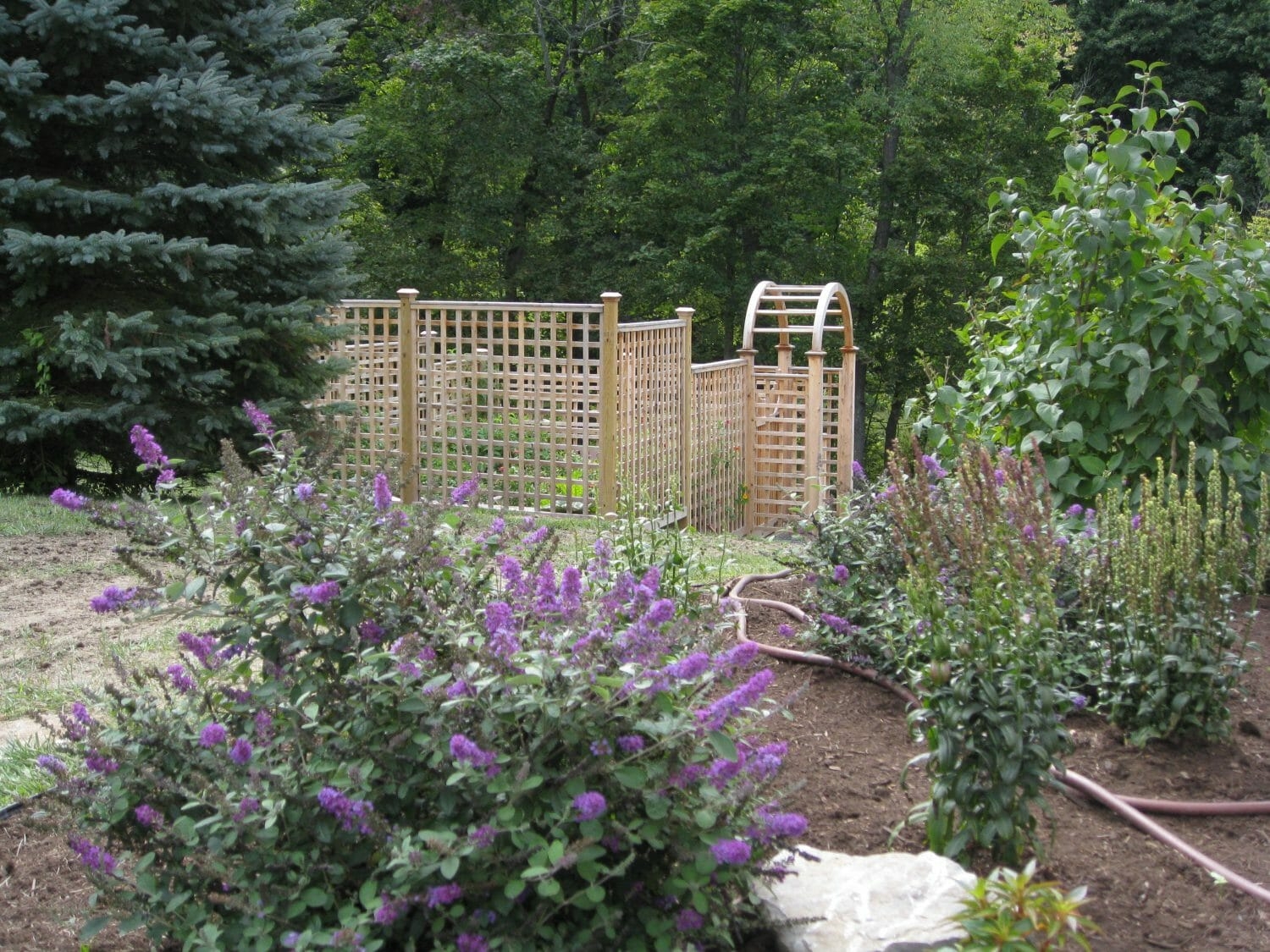 Vegetable Garden and Permeable patio in Delmar, NY
