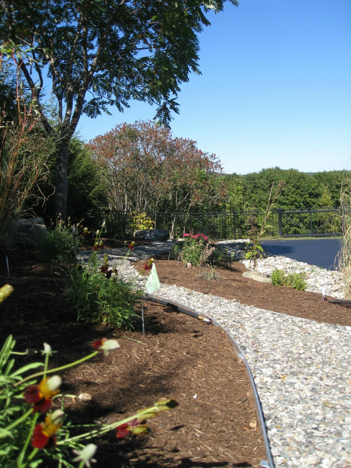 Native plant landscape design Pittstown, NY