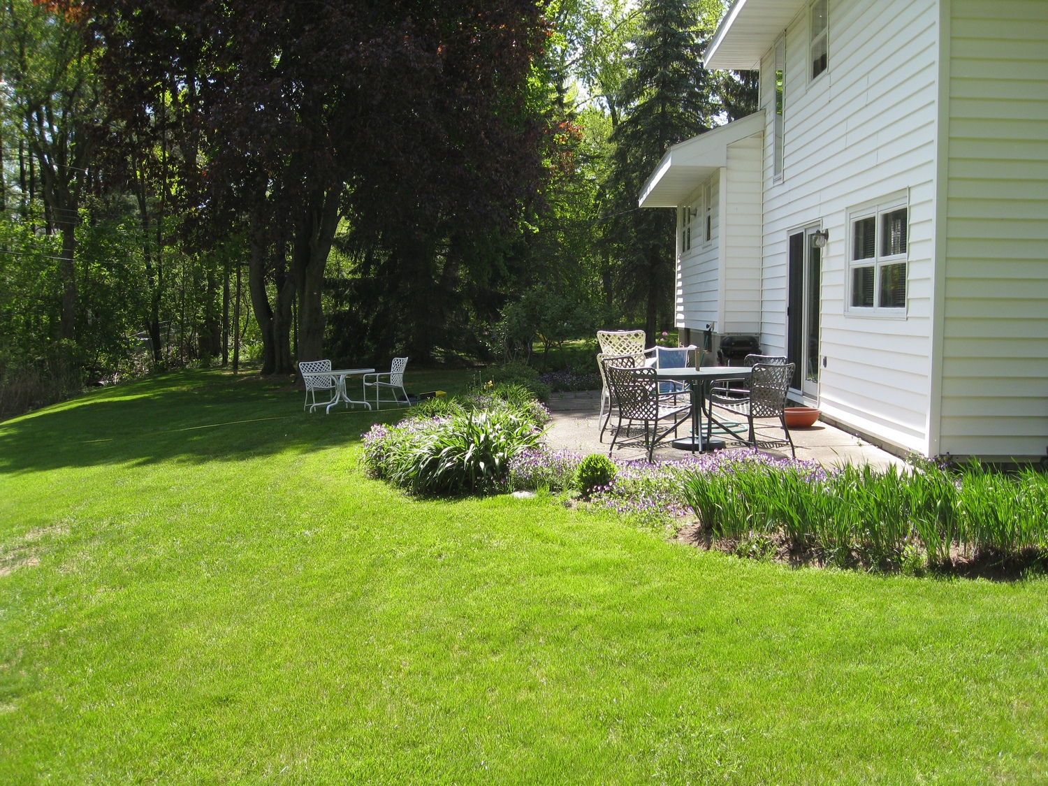 Latham Loundonville NY Backyard Before