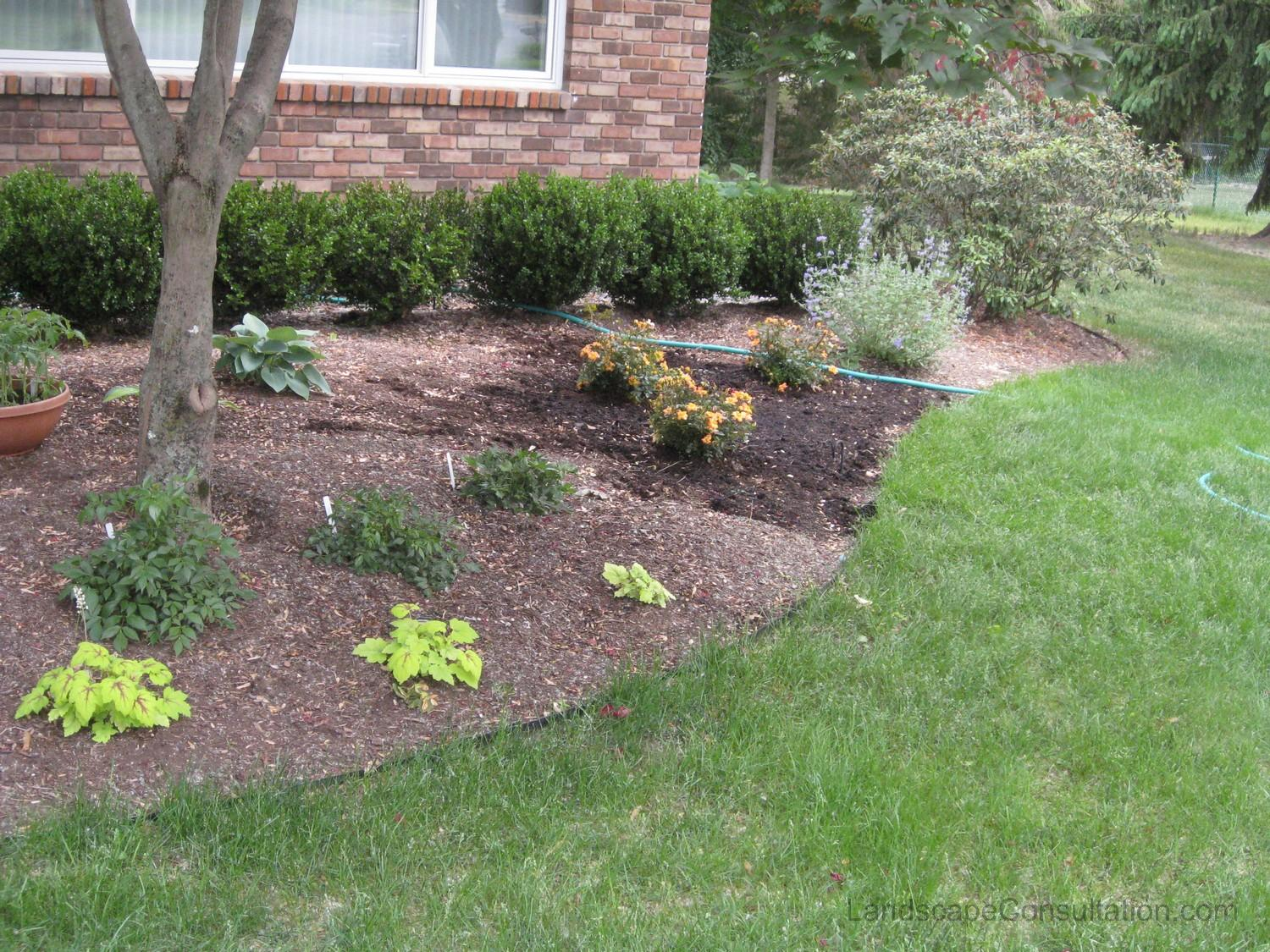 Small space landscape designs landscaping and landscape for Backyard planting designs