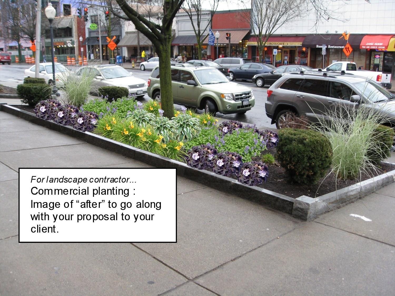 Design services for landscape contractors landscape for Landscape design contractors