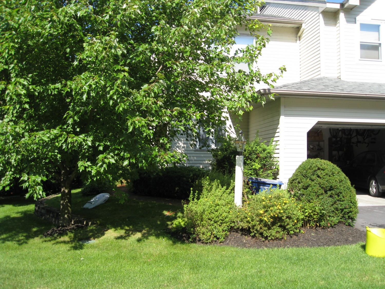 Saratoga Springs NY Landscape Design