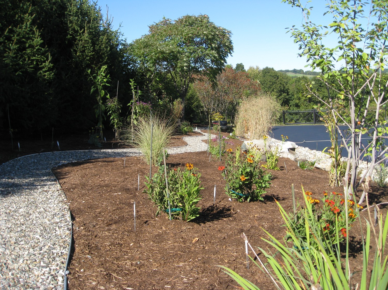 Native Plant Landscape Design Pittstown Ny Landscaping