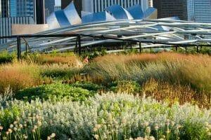 lurie garden millennium park original 300x200 - Creating native perennial plant communities without mulch
